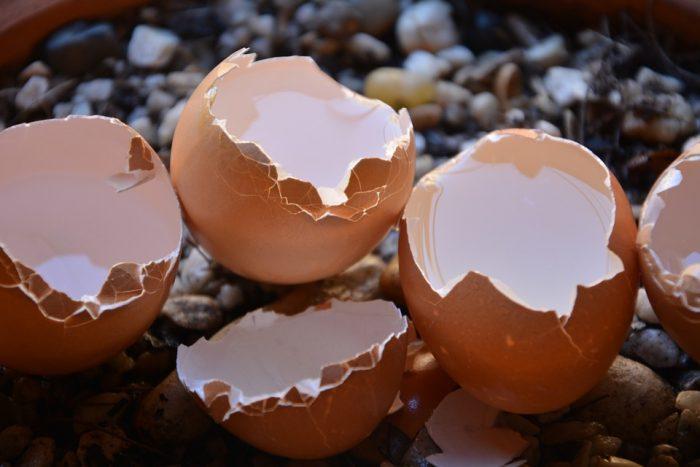 Mit hochwertigen Calcium Kapseln einen erhöhten Bedarf decken