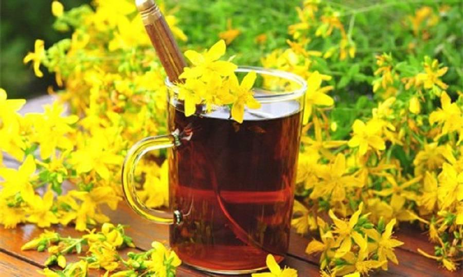 Johanniskraut Tee gegen Husten